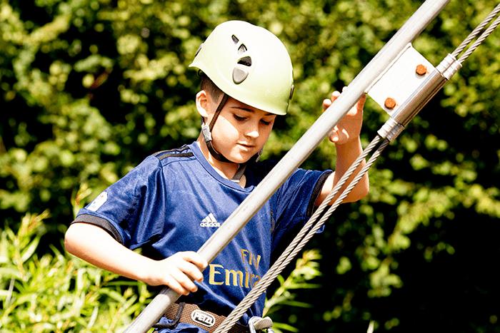 Tree Trek Ladder 1