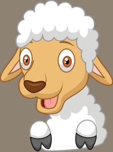 The Barn Yaerd Sheep