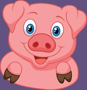 The Barn Yard Pig